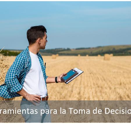 Programación Lineal aplicada al agro (Solver)